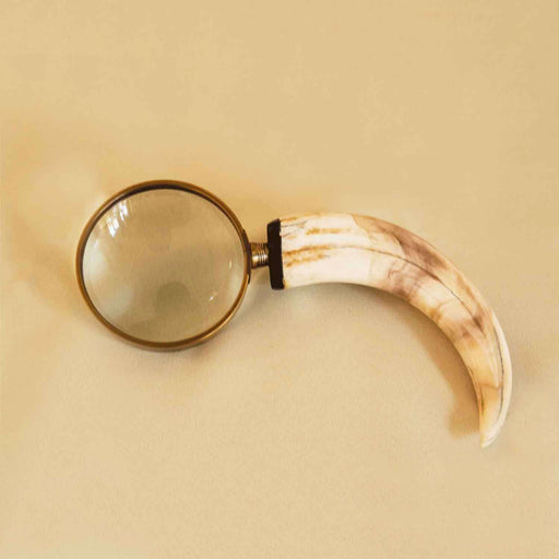 Hand Carved Warthog Tusk Magnifying Glass - Africa Handmade