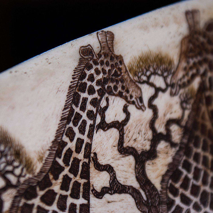 Polished and Hand Carved (Etched) Giraffe Shoulder Blade Bone - Africa Handmade