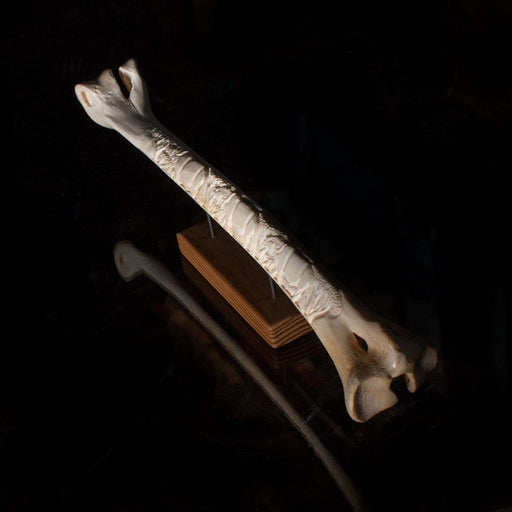 Polished and Hand Carved Ostrich Bone - Africa Handmade