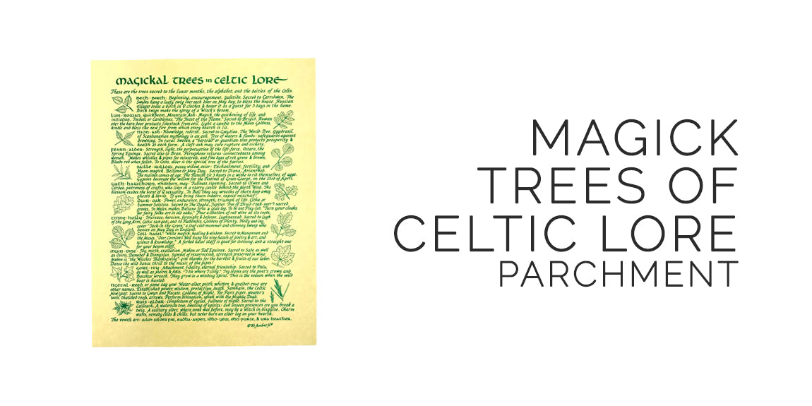 Celtic Tree Magick and Lore Parchment - Sabbat Box