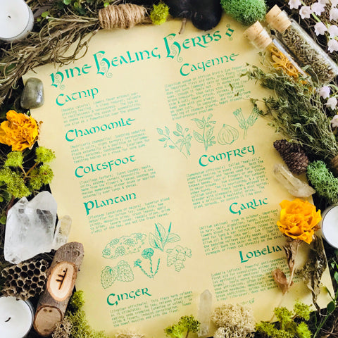 Healing Herbs Parchment Book of Shadows Page - Sabbat Box