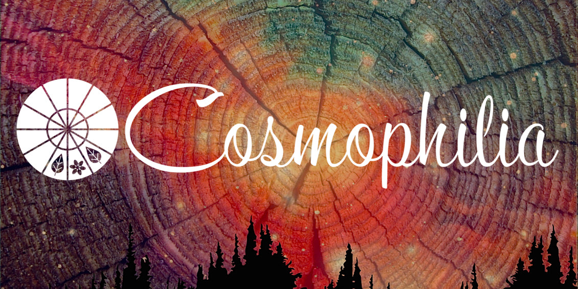 Cosmophilia Astrological Herbals - Sabbat Box Midsummer 2019