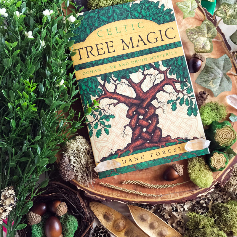 Celtic Tree Magic Ogham Lore and Druid Mysteries By Danu Fores - Sabbat Box