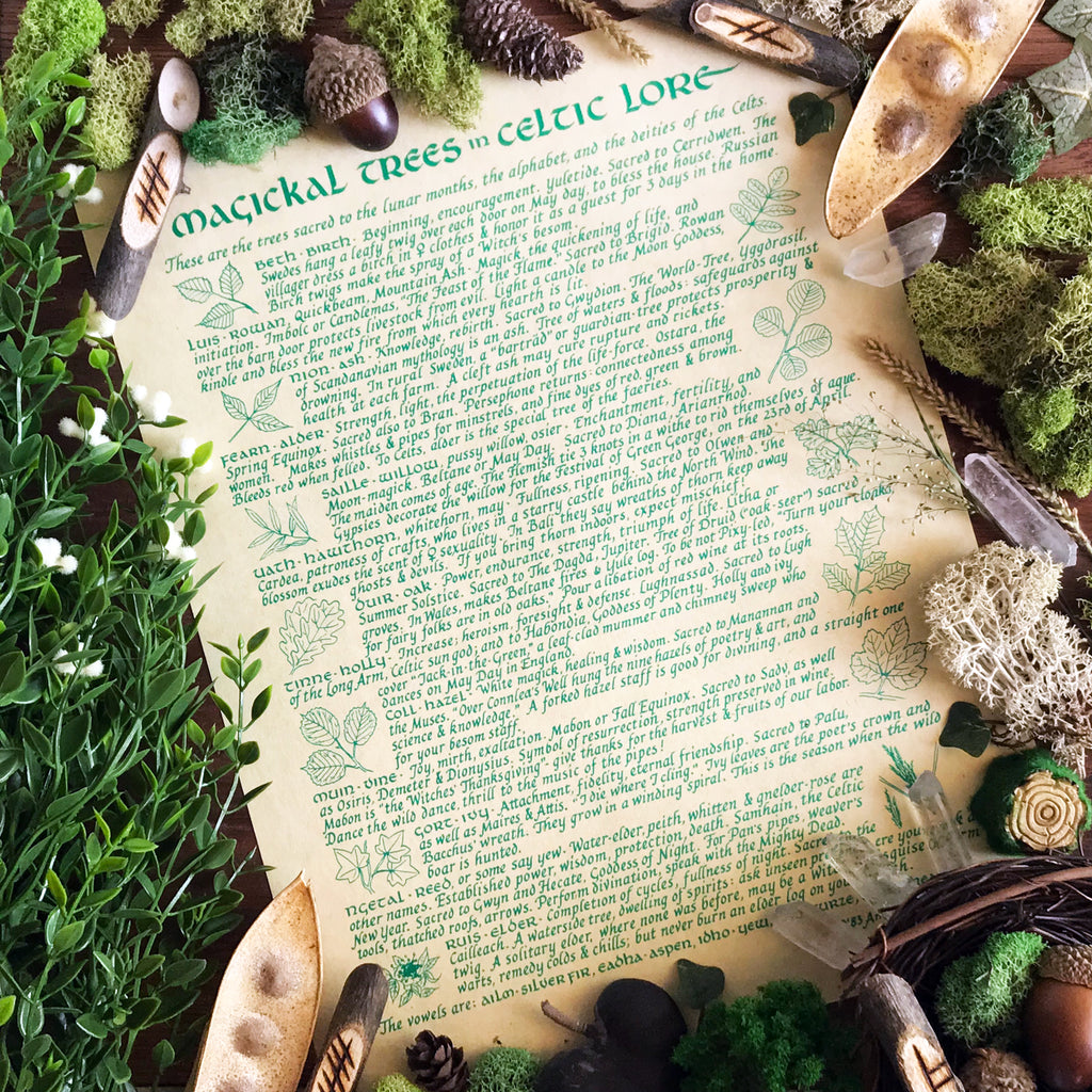 Celtic Trees Parchment - Magickal Trees Of Celtic Lore - Sabbat Box