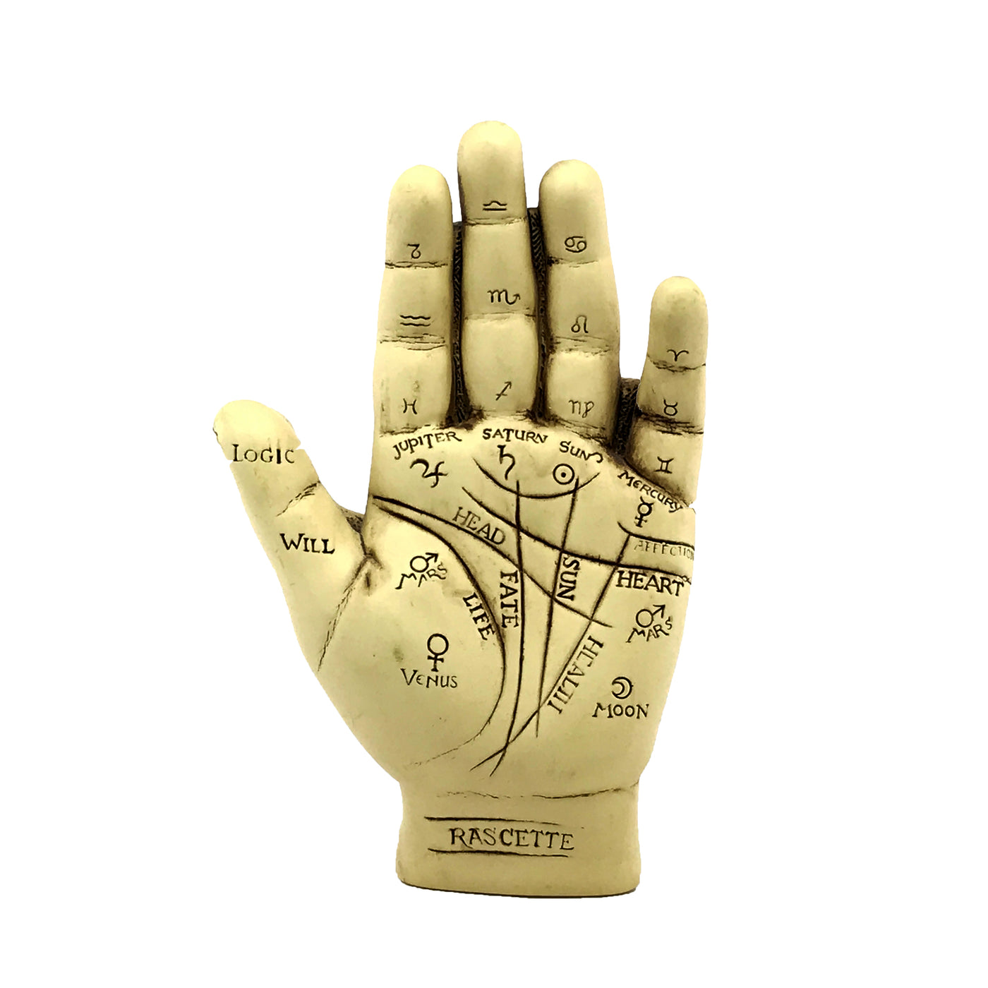 Palmistry Hand Statue Kit With Info Booklet Sabbat Box Diagram Also Palm Reading Chart And Meaning On Statuary
