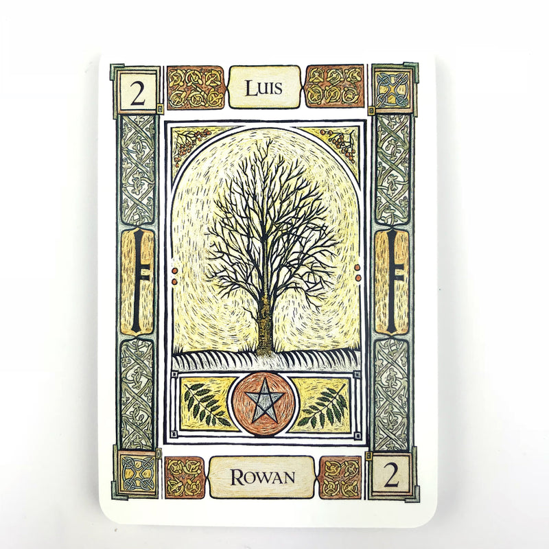 Ogham Divination Oracle Cards - Sabbat Box