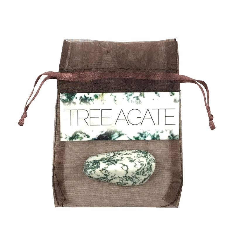 Tree Agate Gemstone Set - Sabbat Box Stones