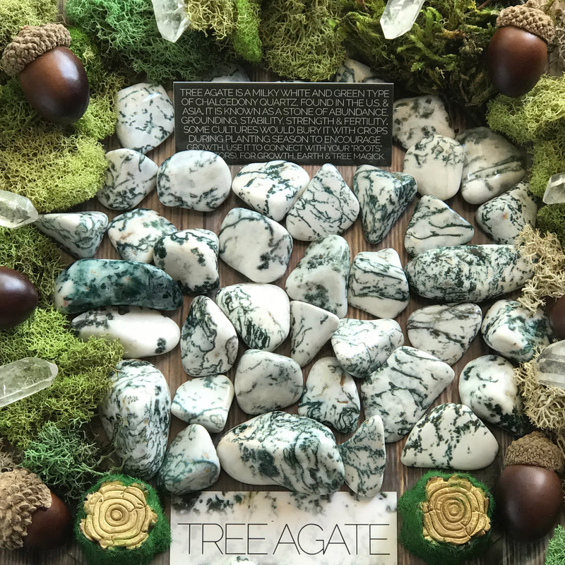 Tree Agate Gemstone Set - Sabbat Box