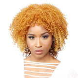 R&B All Star Wivez Synthetic Wig in COIL