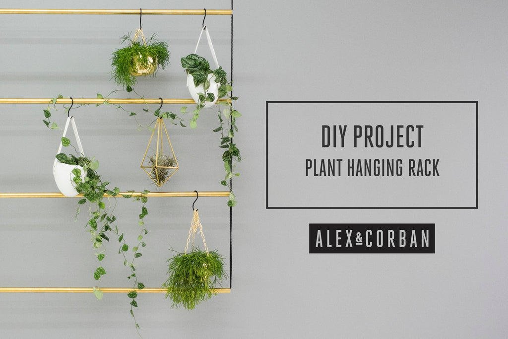 High Quality D.I.Y Brass Plant Hanging Rack