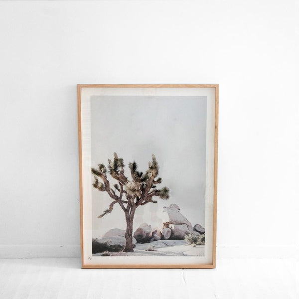 California Desert Framed Art