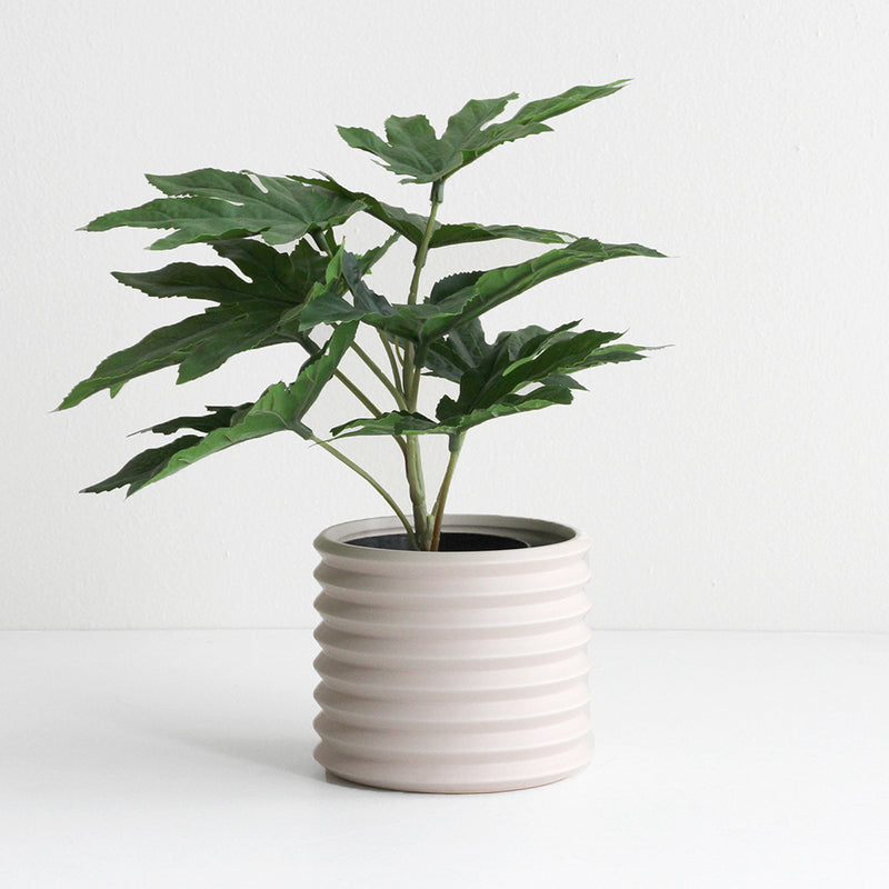 Small Berlin Planter - Parchment
