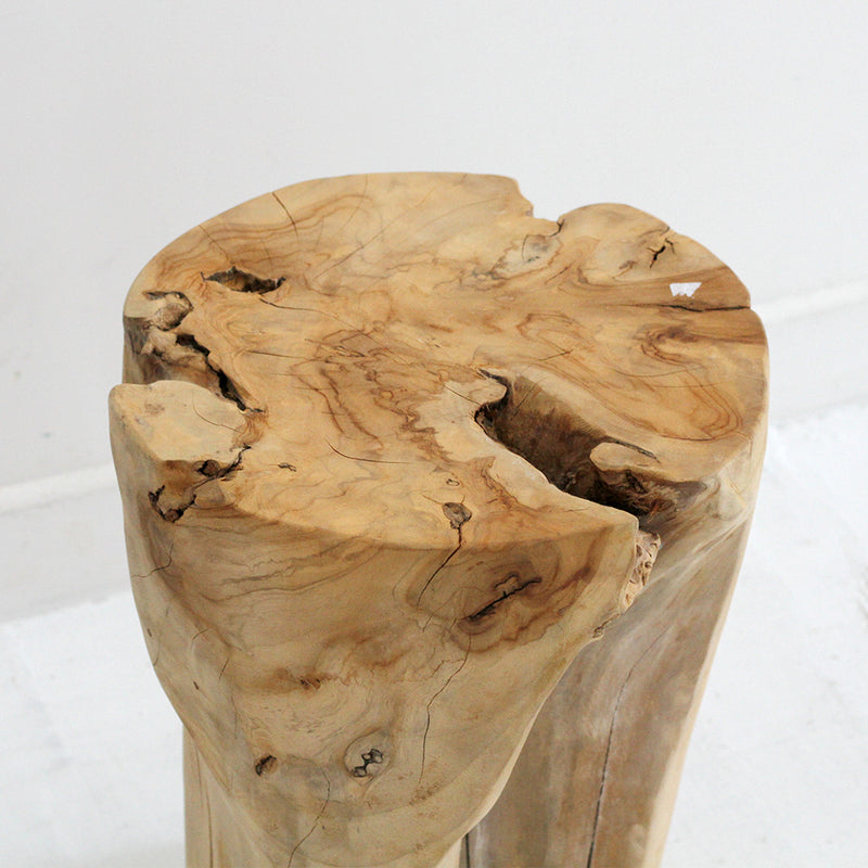 Columbus Root Side Table