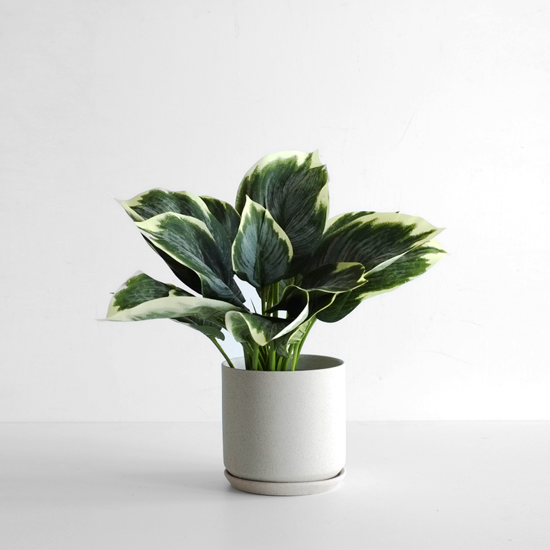 Helsinki Planter Cream - Large