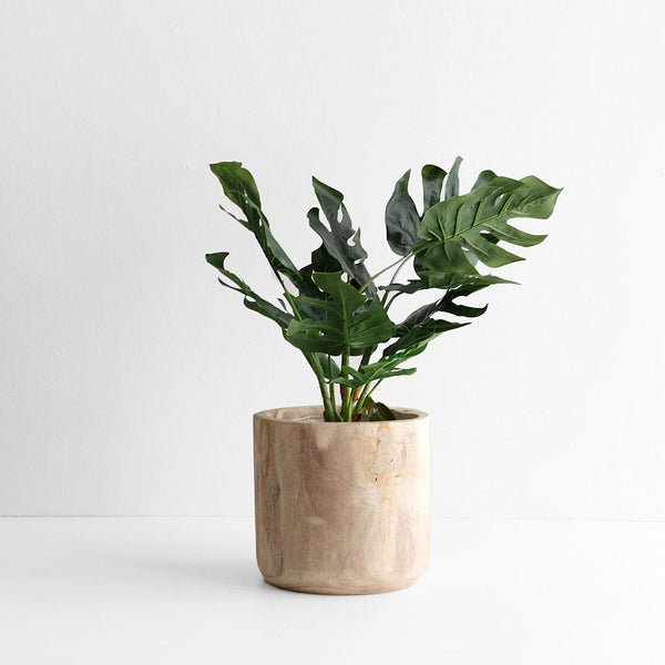 Paulo Tall Indoor Planter Bowl - Medium