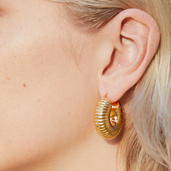 Spiral Shell Gold Plated Earring