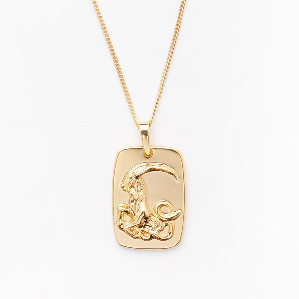 Capricorn Tag Necklace