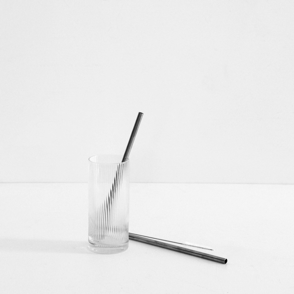 Stainless Steel Metal Straw - Pack of 2