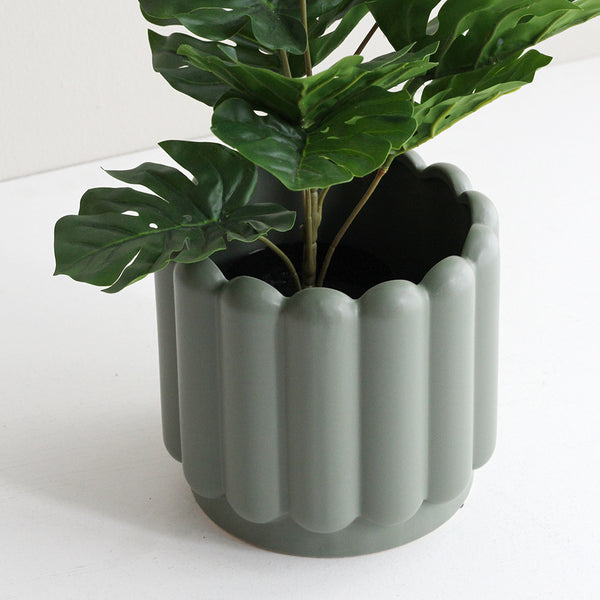 Medium Vienna Planter Eucalyptus