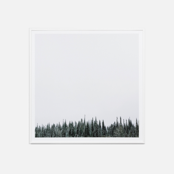 Mountain Forest Framed Art