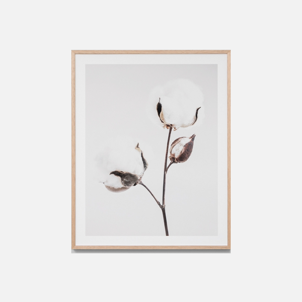Natural Cotton Framed Print