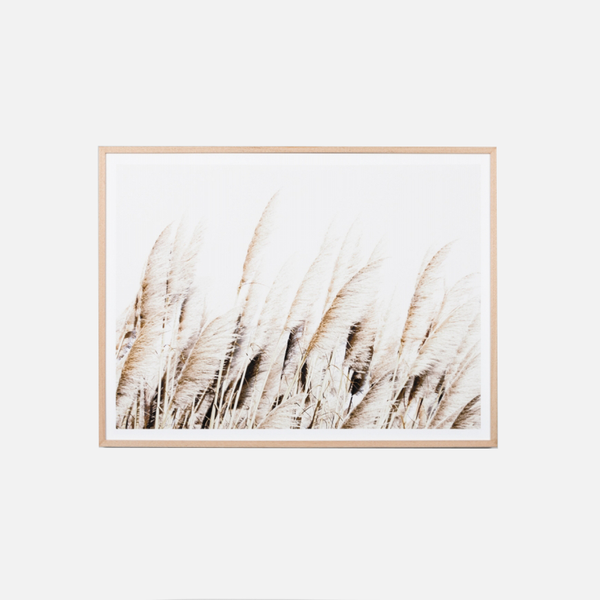 Pampas Breeze Framed Art