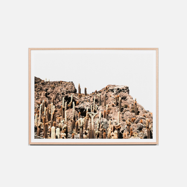 Rocky Cactus Mountain Framed Art