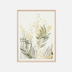Wattle Bloom 1 Framed Artwork