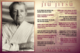The 12 Commandments of Brazilian Jiu Jitsu - BJJ Problems