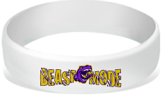 MatChats - Beast Mode (GLOW IN THE DARK) Silicone Wrist Bands - Level 4: Champion
