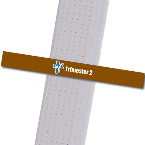 Shepherd-Warrior MA - Trimester 2 - Brown Custom Belt Stripes - BeltStripes.com : The #1 Source for Martial Arts Belt Tape