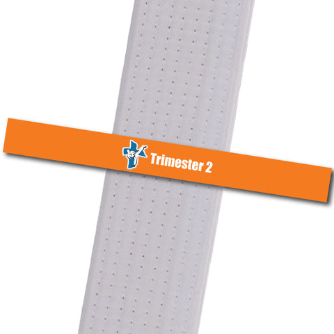 Shepherd-Warrior MA - Trimester 2 - Orange Custom Belt Stripes - BeltStripes.com : The #1 Source for Martial Arts Belt Tape