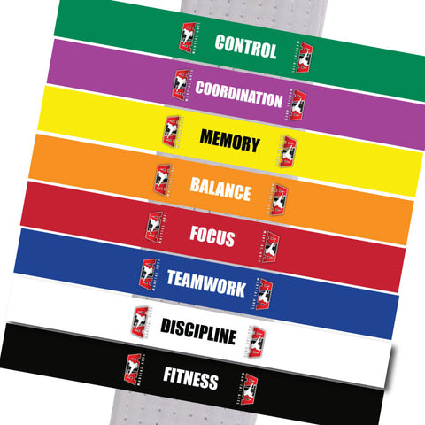 Triple Crown - Basic SKILLZ Complete Sets of all 8 Colors - BeltStripes.com