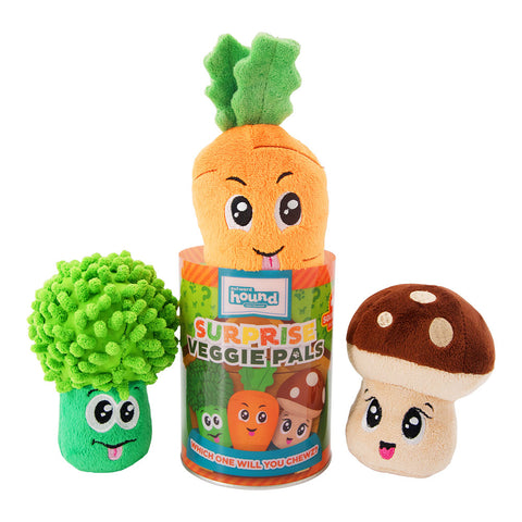 Surprise Veggie Pal Dog Toy