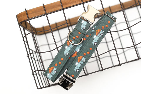 Pumpkin Trucks Dog Collar