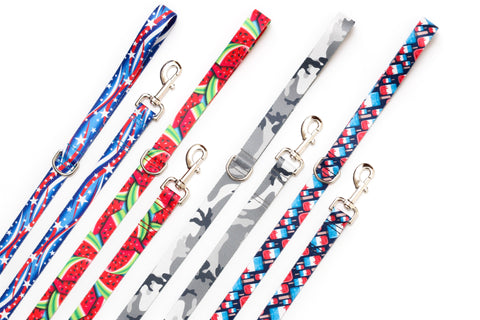 4th of July Endurance Leashes