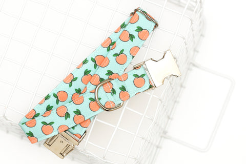 Peaches Dog Collar