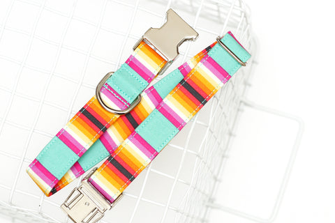 Summer Stripes Dog Collar