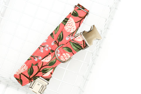Summer Coral Floral Dog Collar