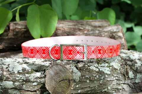 Expedition Ridge in Cayenne - Waterproof Titan Dog Collar - Dirtproof, Stinkproof by Zaley Designs