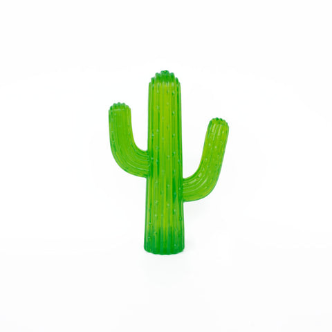 Durable Cactus Dog Toy
