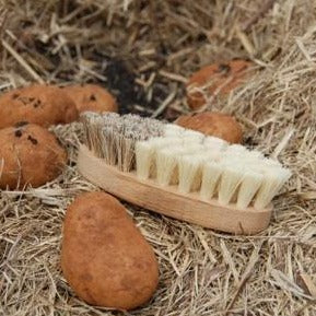 Eco Vege brush