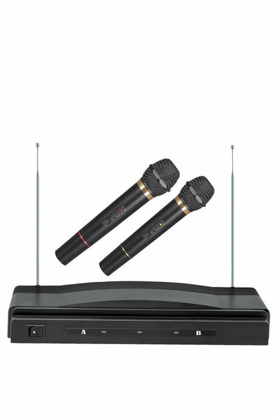 Two Wireless Microphones with Receiver
