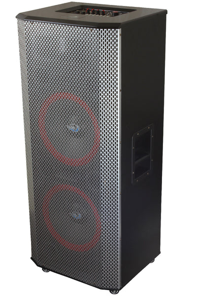 Professional 2900W DJ Party Speaker with 2x12