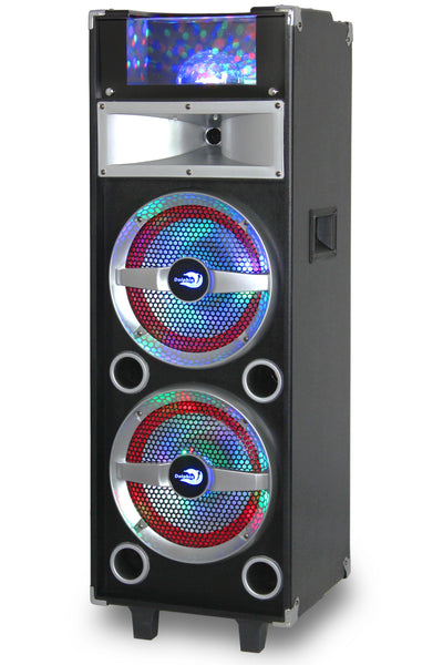 Party Speaker System with 2x10