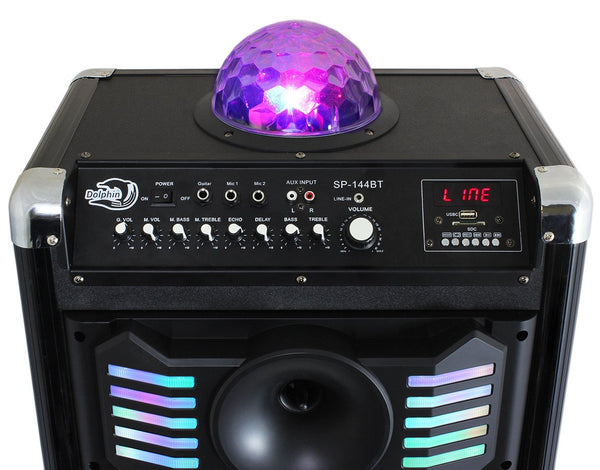 Party Speaker With 2x12