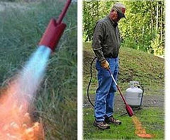 Red Dragon Propane weed burning torches for organic gardening and weed control in your yard and garden