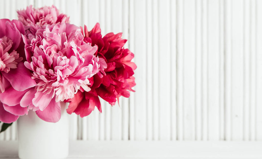 5 Reasons To Send Peonies To Your Loved Ones in Malaysia