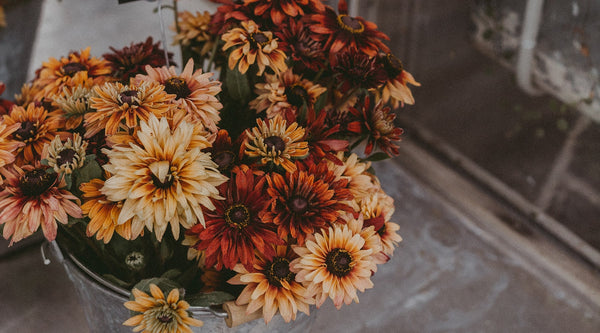 5 Reasons Why You Should Definitely Buy Yourself Flowers