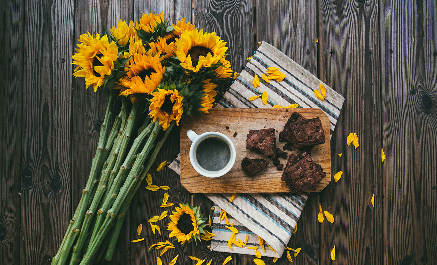 sunflower-meaning-flatlay-feature-01